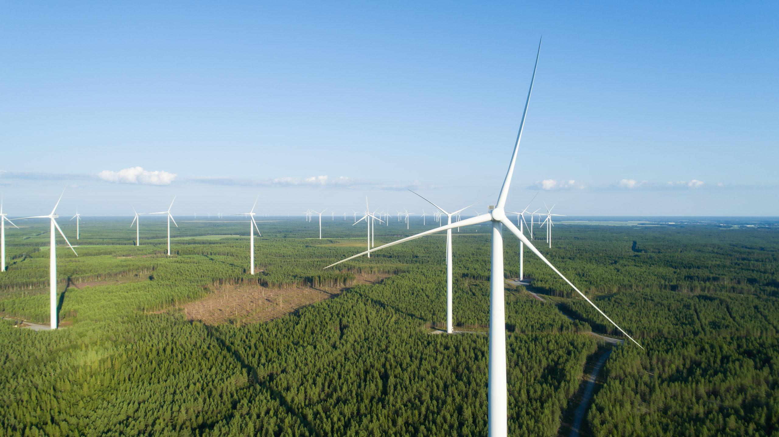 Windpark in einem Waldgebiet von oben mit großen weißen Windrädern